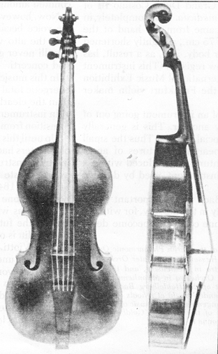 Bach's deep-ribbed viola pomposa